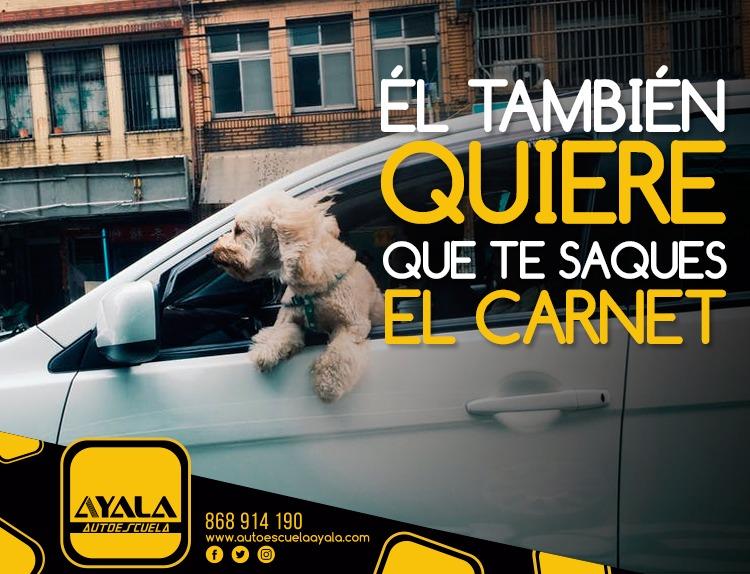 Ventajas de sacar el carnet en Autoescuela Ayala